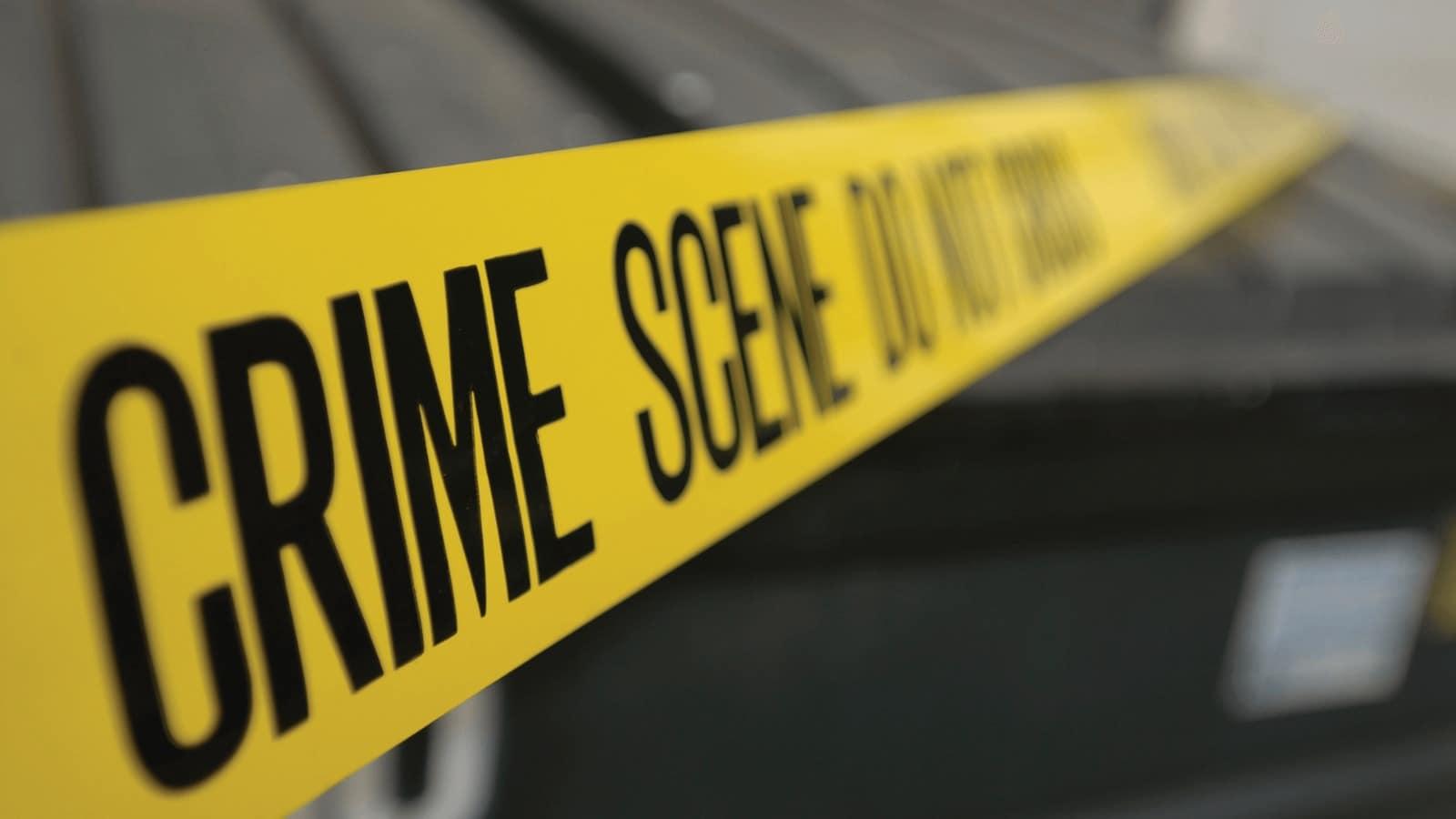 Psychopathie, crimineel gedrag, en strafrecht